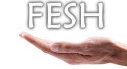 Trägerverein der Fesh